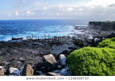 Blowhole at Suarez Point on Galapagos Stock photo © backyardproductions