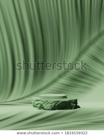 Rock · eau · printemps · nature · feuille · beauté - photo stock © leungchopan