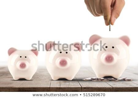 Ceny bezpieczne ręce biznesmen monety bezpieczeństwa Zdjęcia stock © joseph73