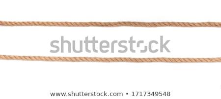 különböző · usb · kábel · izolált · fehér · háttér - stock fotó © ozaiachin