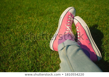 vintage sneakers resting on the grass Stock photo © Massonforstock