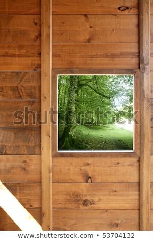 Fából készült ablak dzsungel zöld erdő kilátás Stock fotó © lunamarina