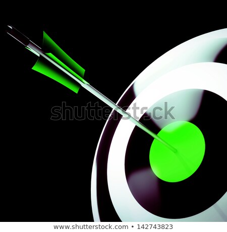 bulls eye shot shows excellence and skill stock photo © stuartmiles