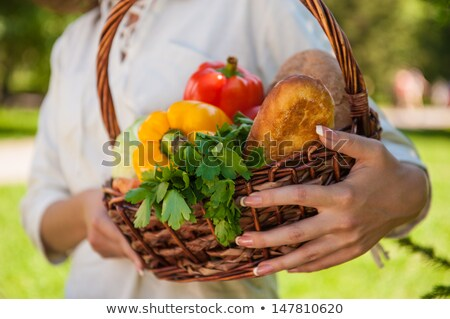 Unrecognizable woman holding basket full of vegetables and bread Stock photo © HASLOO