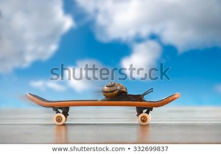 get your skates on Stock photo © jayfish