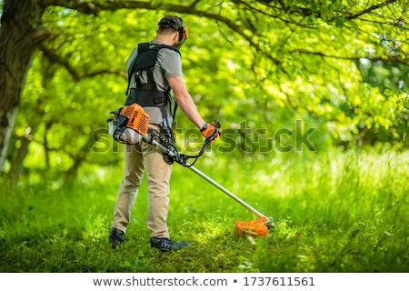 Сток-фото: трава · работник · Motor · город