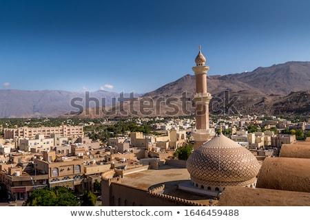 Kilátás erőd épületek pálmafák város épület Stock fotó © w20er