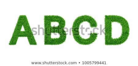 Letters A, B, C, D of 3d Green Grass - Set. Stock photo © tashatuvango