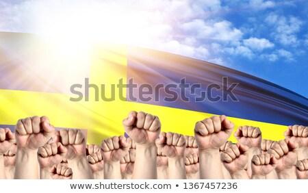 zászló · Svédország · számítógép · generált · illusztráció · selymes - stock fotó © stevanovicigor