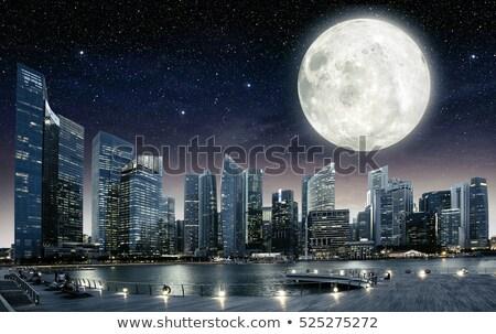 romántica · luna · llena · cielo · de · la · noche · cielo · luz · conejo - foto stock © ankarb