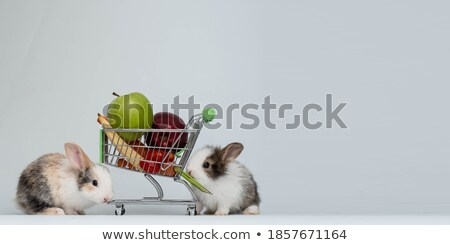 shopping cart with easter eggs and bunny  isolated on white Stock photo © compuinfoto