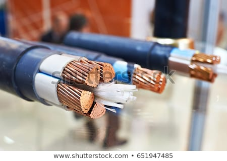 bunch power cable stock photo © nemalo