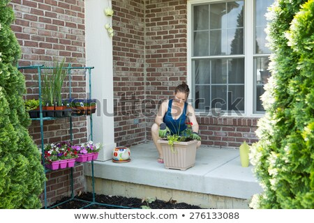 Woman tending to newly potted plants on her patio Stock photo © ozgur