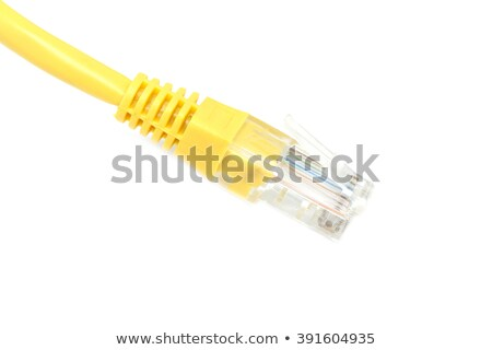 Jaune ethernet câbles serveur Retour ordinateur Photo stock © silkenphotography