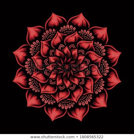 Frattale fiore rosso blu nero computer Foto d'archivio © raduga21