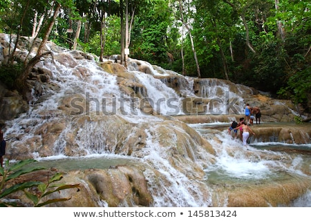 Caribbean beach on the northern coast of Jamaica Stock photo © master1305