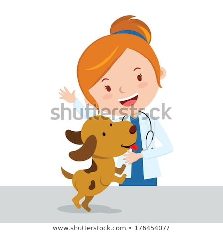 Photo stock: Vétérinaire · cute · labrador · médicaux