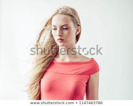 Schoonheid portret elegante blond dame creatieve Stockfoto © PawelSierakowski