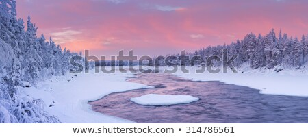 congelada · lago · neve · coberto · floresta · ensolarado - foto stock © oleksandro