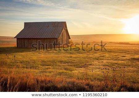 Starych stodoła krajobraz antyczne gospodarstwa obraz Zdjęcia stock © Backyard-Photography