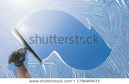 Limpador de janelas ilustração menina limpeza limpar esponja Foto stock © adrenalina