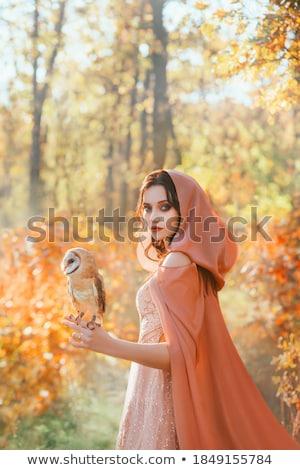 Misterioso mulher floresta olhando câmera escuro Foto stock © dariazu