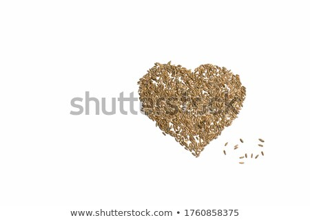 Handful of harvested corn seed heart shaped pile, top view Stock photo © stevanovicigor