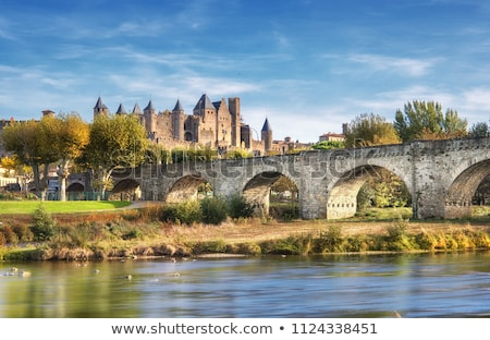 Castle of Carcassonne, France Stock photo © LianeM