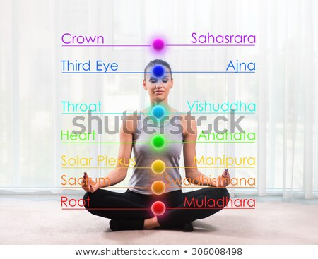 chakra · een · zeven · indian · yoga · lotus - stockfoto © hpkalyani