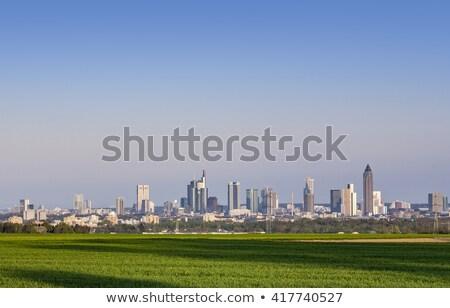 Kilátás Frankfurt sziluett mezők késő délután Stock fotó © meinzahn