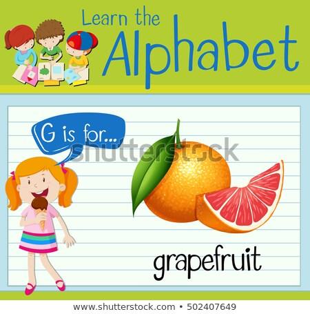 Alfabet grejpfrut ilustracja dzieci dziecko owoców Zdjęcia stock © bluering