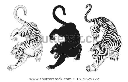 tigris · tetoválás · örvény · minta · természet · macska - stock fotó © kuzzie