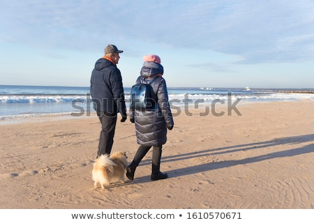 köpek · yavrusu · sekiz · ay · eski · bebek · saç - stok fotoğraf © kokimk
