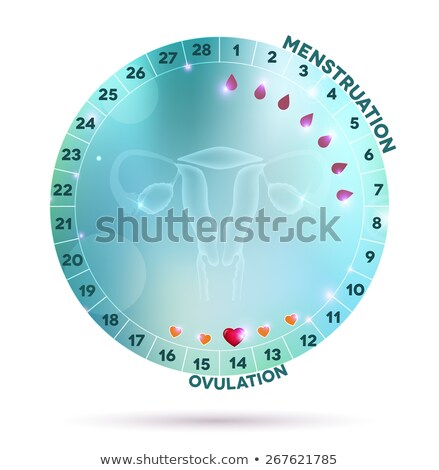 beautiful light blue menstrual cycle graphic stock photo © tefi