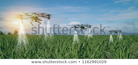 Smart farming concept, farmer using drone in field Stock photo © stevanovicigor