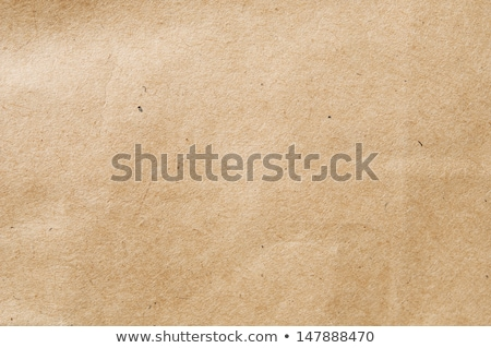 Zdjęcia stock: Brown Wrinkle Recycle Paper Background Eco Paper Background