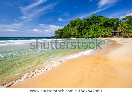 Panama rot Welt Ozean 3D-Darstellung Stock foto © Harlekino