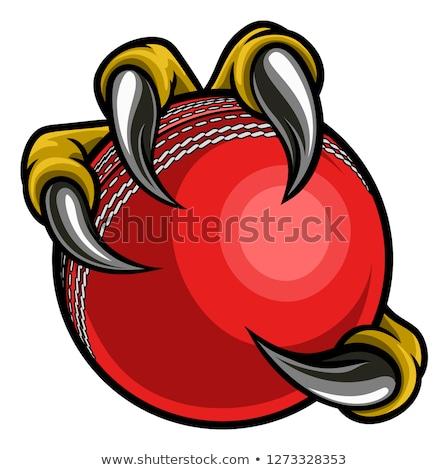 волка · крикет · мяча · талисман · сердиться - Сток-фото © krisdog