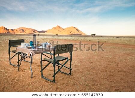 пустыне лагерь Намибия пыльный Африка дерево Сток-фото © prill