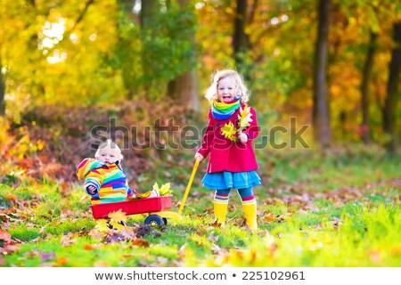 Kardeş kardeş el arabası doğa bahçe gülen Stok fotoğraf © IS2
