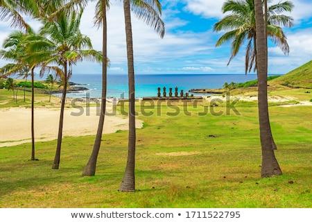 Palm пляж Пасха Остров Пасхи Чили Сток-фото © daboost