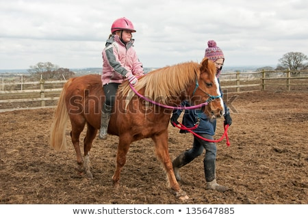 Young girl riding her pony Stock photo © IS2