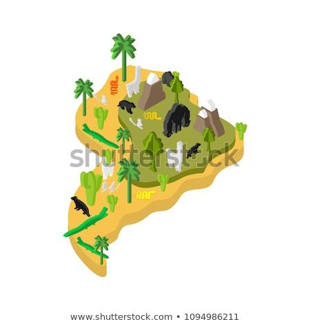 Amérique du sud flore faune carte animaux plantes Photo stock © popaukropa