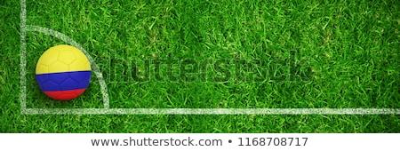 Futebol Colômbia cores campo de futebol plano futebol Foto stock © wavebreak_media