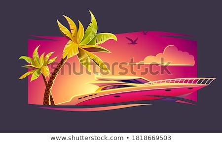 Elita luksusowe jacht tropikalnych palmy hot Zdjęcia stock © LoopAll