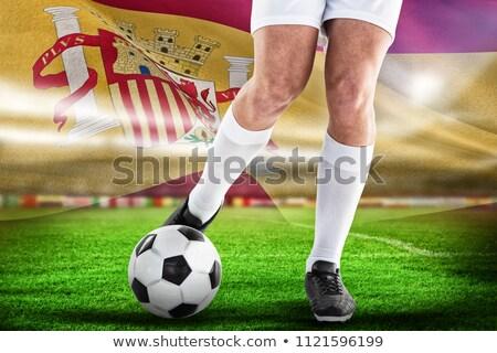 Futbolista digitalmente generado espanol bandera hierba Foto stock © wavebreak_media