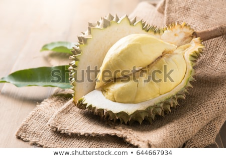 mon thong durian is fruit plate tropical durian and king of frui Stock photo © ungpaoman