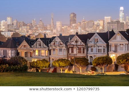dusk over the painted ladies of san francisco stock photo © yhelfman