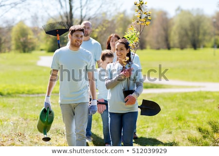 group of volunteers with trees and rake in park Stock photo © dolgachov