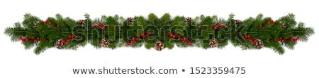 Christmas Garland Isolated White Background Stock photo © adamson